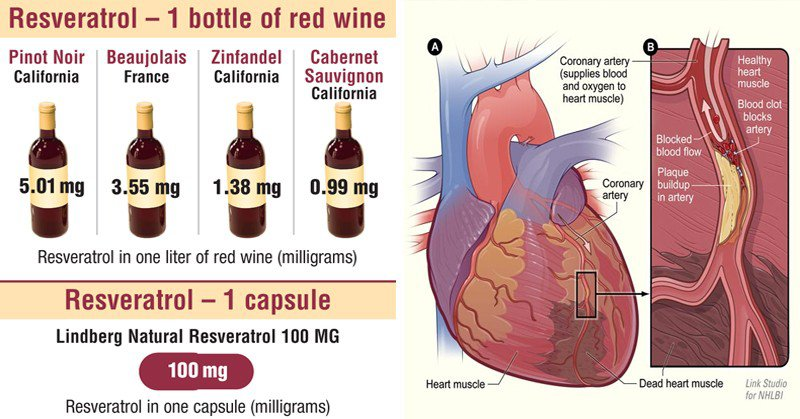 Why Getting More Resveratrol is the Secret to Lower Blood Pressure and Anti-Aging - Healthy Food Society