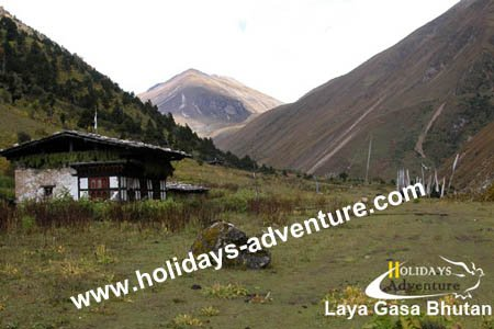 Laya gasa Trekking, Laya gasa trekking tour in Bhutan | Trekking in Nepal, Holidays adventure in Nepal, Trekking and tour operator agency in Nepal
