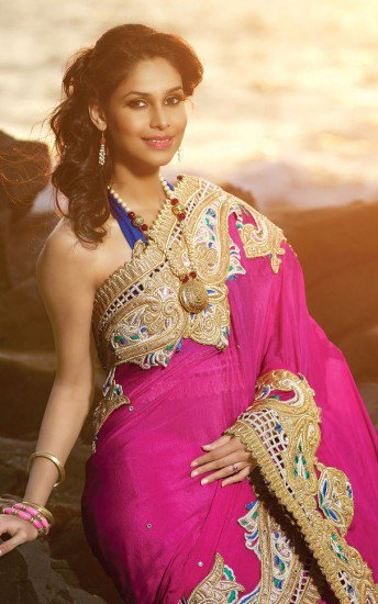 Laroyal offers the large collection of  embroidery saree and indian saree  dresses in your budget prices.