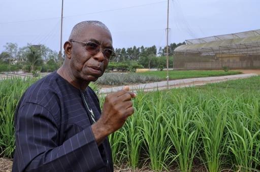 Au Bénin, une ferme bio comme modèle pour l'Afrique
