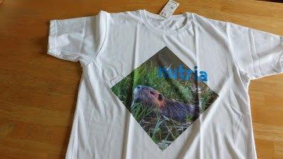 ヌートリア --- 日本ヌートリア交流協会公式ブログ ---: ヌートリアTシャツ新調