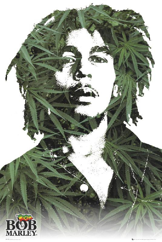 http://www.affiches-et-posters.com/images/products/xl_LP1175-BOB-MARLEY-leaves-1-.jpg