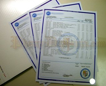 Buy fake high school Diploma | Fake University certificate