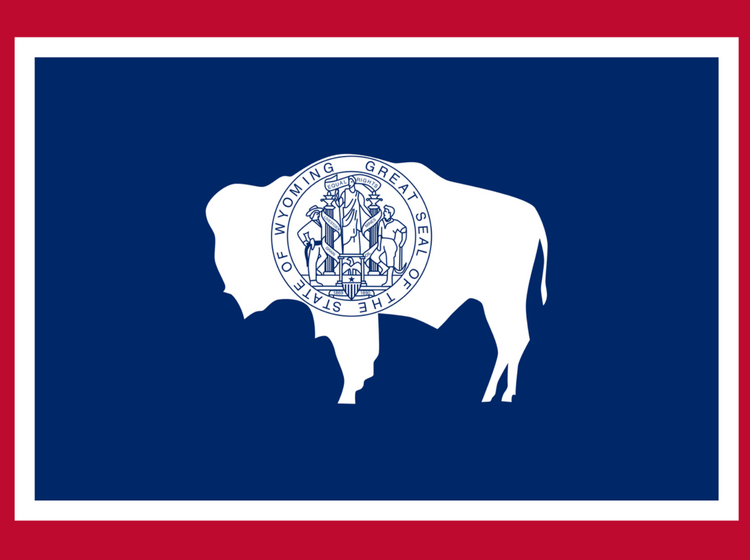 5 Razones para Establecer su Sociedad Offshore en Wyoming, EEUU