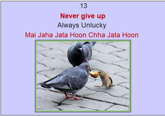 Amazing Product | Mai Jaha Jata Hoon Chha Jata Hoon