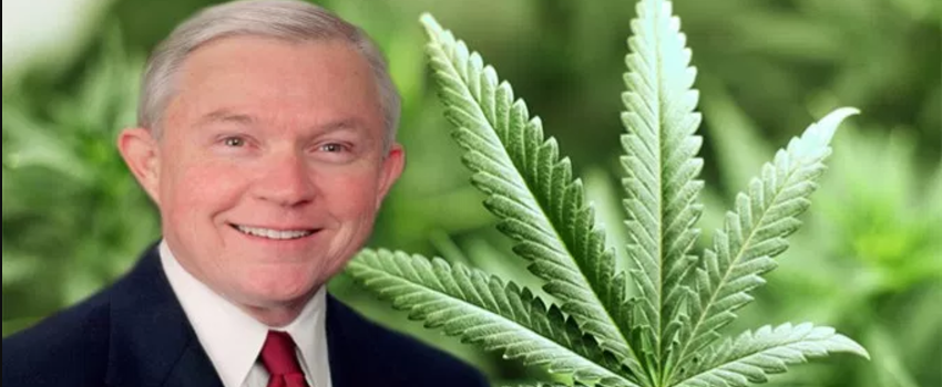 Why Marijuana is a Political Hot Potato - I Love Growing Marijuana