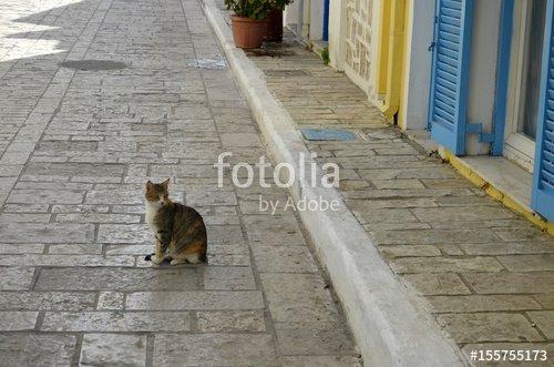 """""""Rues de Pythagorion (Samos)"""" photo libre de droits sur la banque d'images Fotolia.com - Image 155755173"""