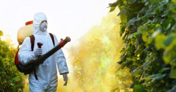 Voilà comment arrêter le nouveau poison de Monsanto