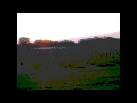 Travis - Sing (par Ranch de Sauvagnac production)