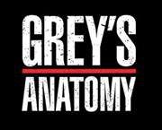 Fans de Grey's Anatomy France