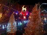 Annonce 'Noël à Roanne'