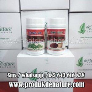 Obat Herbal De Nature ( Sipilis, Gonore , Kencing Nanah, Raja Singa )
