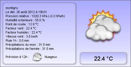 Ma station météo en ligne Montigny - 79380