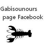 Gabisounours