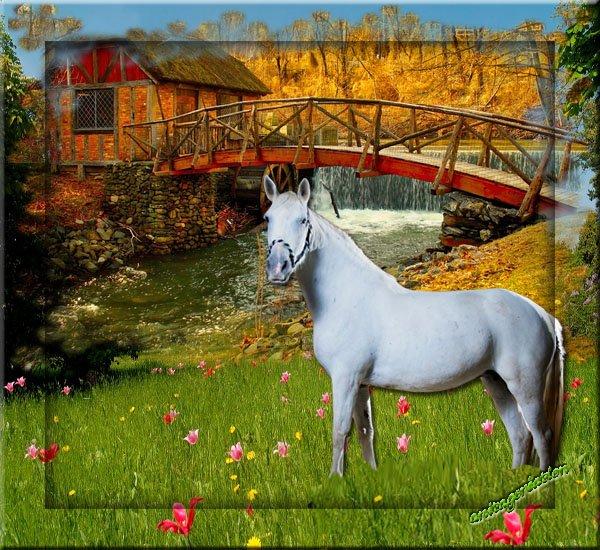 Créations chevaux - L-univers-anitagc-creations