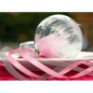 Boule Plexi 5 cm Boule Plexi Transparente Plastique