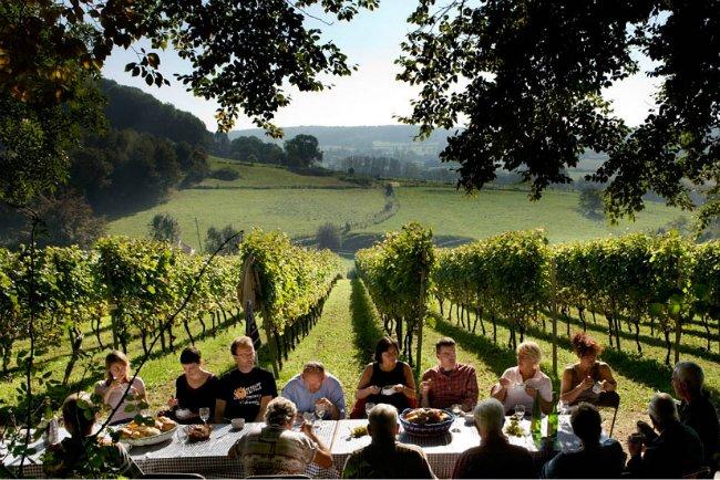 Focus sur les vins belges