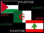 Algerie,Palestine,Liban !