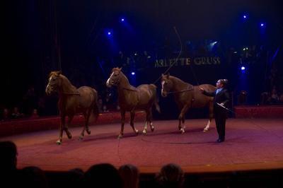 Tournée 2010 - La Légende du cirque arlette gruss