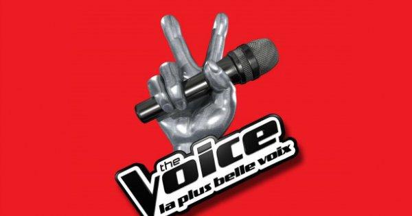 The Voice 3: Un ancien professeur de la Star Academy a passé les auditions à l'aveugle