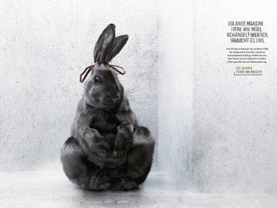 2016 10 11_TIR lanciert neue Kampagne gegen Tierquälerei - Solange Tiere wie Müll behandelt werden, braucht es uns!