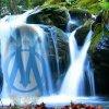 Ici, c'est l' O.M !!! - Supporters de l'Olympique de Marseille