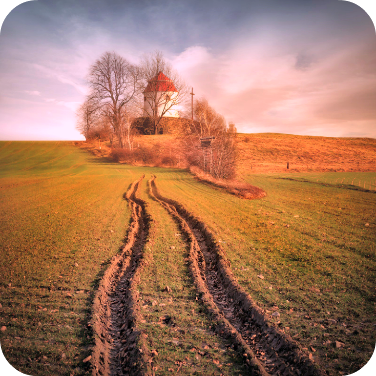 If You cannot follow Your own Tracks then there is no Finish Line. | Daily Poetry and Stories Portal | Easy Branches