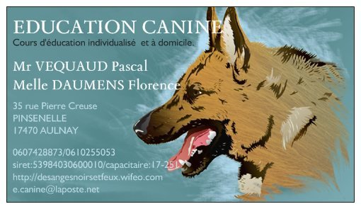 EDUCATION DRESSAGE COMPORTEMENTALISME ANIMALIER ET PENSION CANINE AULNAYSIENNE