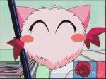 ♥♥♥♥♥♥♥♥♥♥♥♥♥♥♥♥♥♥♥♥♥♥♥♥♥♥♥♥♥♥ ♥présentation de mini mew/masha♥♥♥♥♥♥♥♥♥♥♥♥♥♥♥♥♥♥♥♥♥♥♥♥...