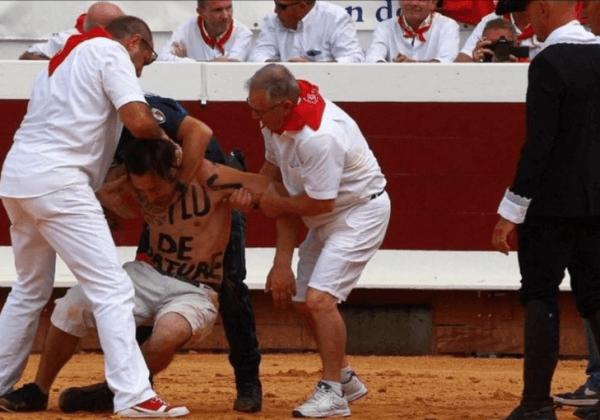 La corrida : une atrocité, pas un sport | Animaux utilisés pour le divertissement | PETA France