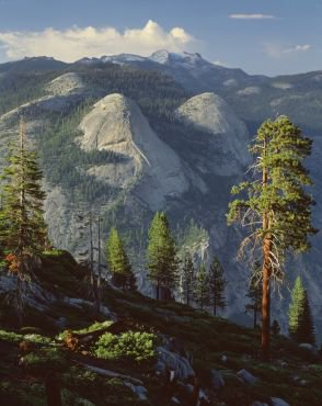 Yosemite - Leading Lights. In the Footsteps of Ansel Adams