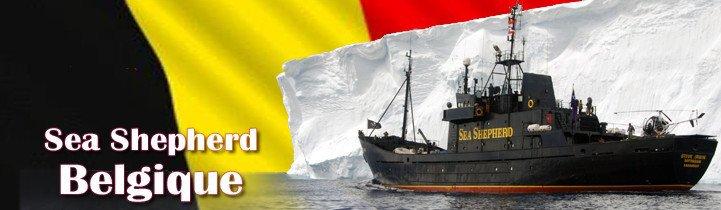 Belgique Home - Sea Shepherd FR