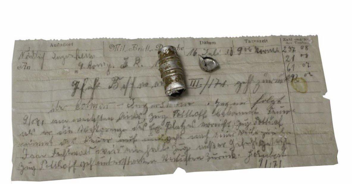 Insolite. Le pigeon voyageur perd son message, il est retrouvé 110 ans plus tard!
