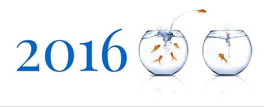 Les 5 Juridictions de Service Bancaire Offshore Émergentes en 2016
