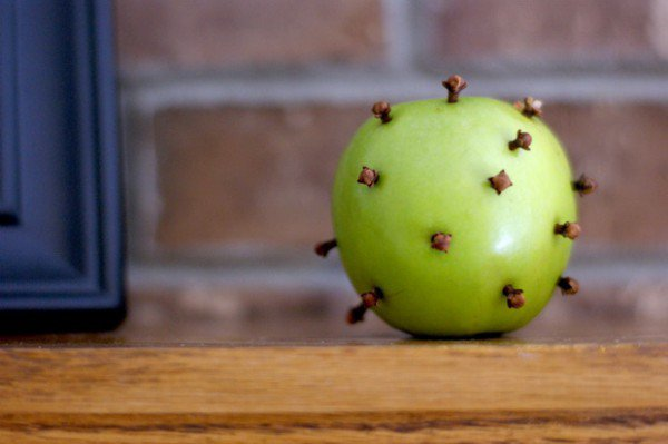 Get Rid Of Fruit Flies Naturally With This Simple But Very Effective Trick - Healthy Food Society