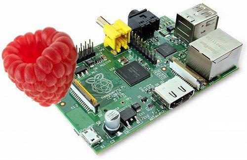 Le génome de la framboise sur Raspberry Pi — Emergences