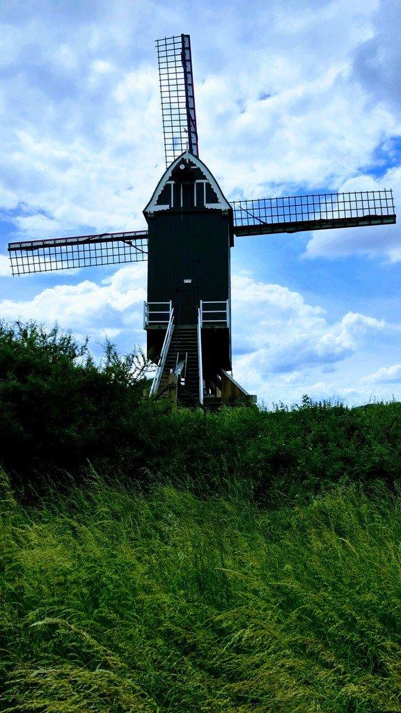 Le moulin à vent de l'Hof Ter Musschen - LNO