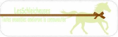 Blog pour la communauté