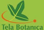 Questions d'étymologie et de latin botanique