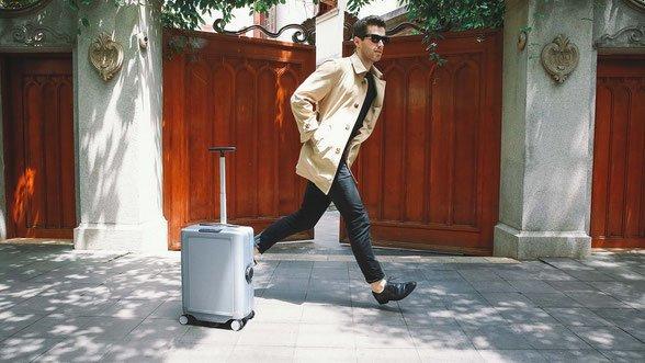 vous voulez un animal de compagnie ? optez pour la valise