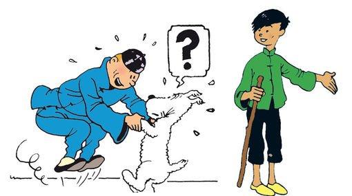 Les aventures de Tintin au Tibet : Épisodes 5 à 9