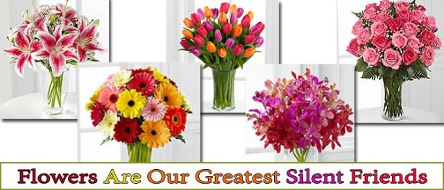 Top 5 Flowers Make Your Loved Ones Day More Special - Best Flowers Delivery