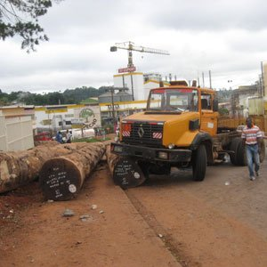 CAMEROUN :: Cameroun : Autocar contre grumier à Loumbou, 9 morts :: CAMEROON