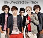 L'univers des One DIrection vu de France