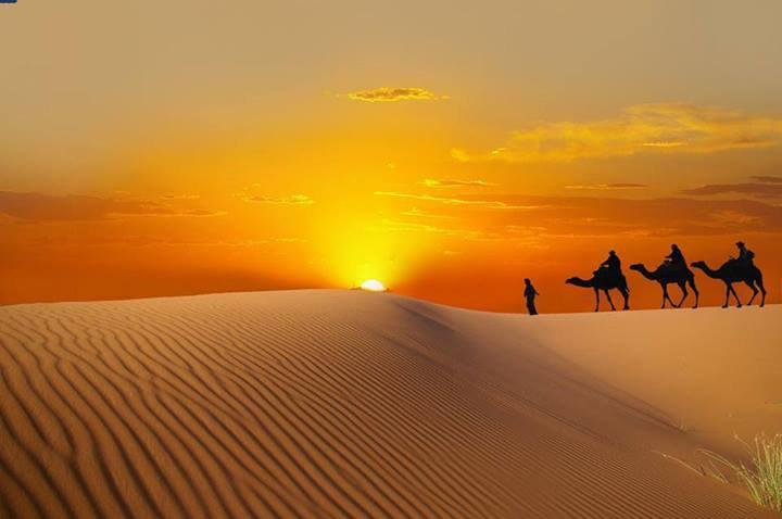 désert tunisien (l)