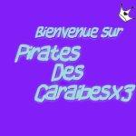 blog de Pirates des Caraibes :)