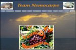 Wix.com Club Nemocarpe created by carpiste49460 based on world-wide-solutions