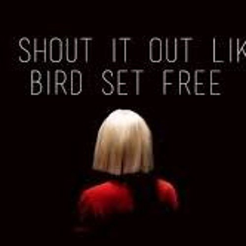 Bird set free remix