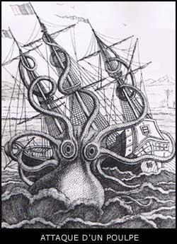 Les monstres des mers et des océans et les mystérieuses carcasses rejetées par la mer.