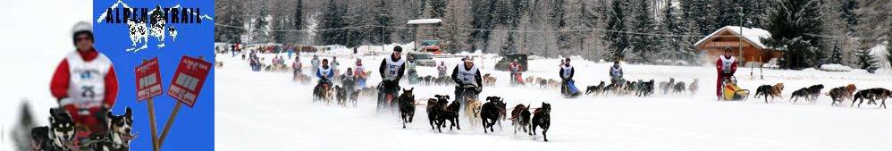 Alpen-Trail 2015